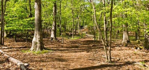billy-goat-trail-910222_640